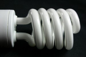 Compact Fluorescent Light Bulb